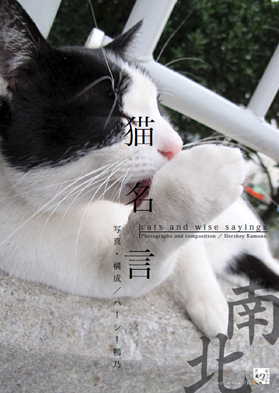 猫の名言集