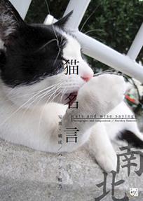 猫名言 南北